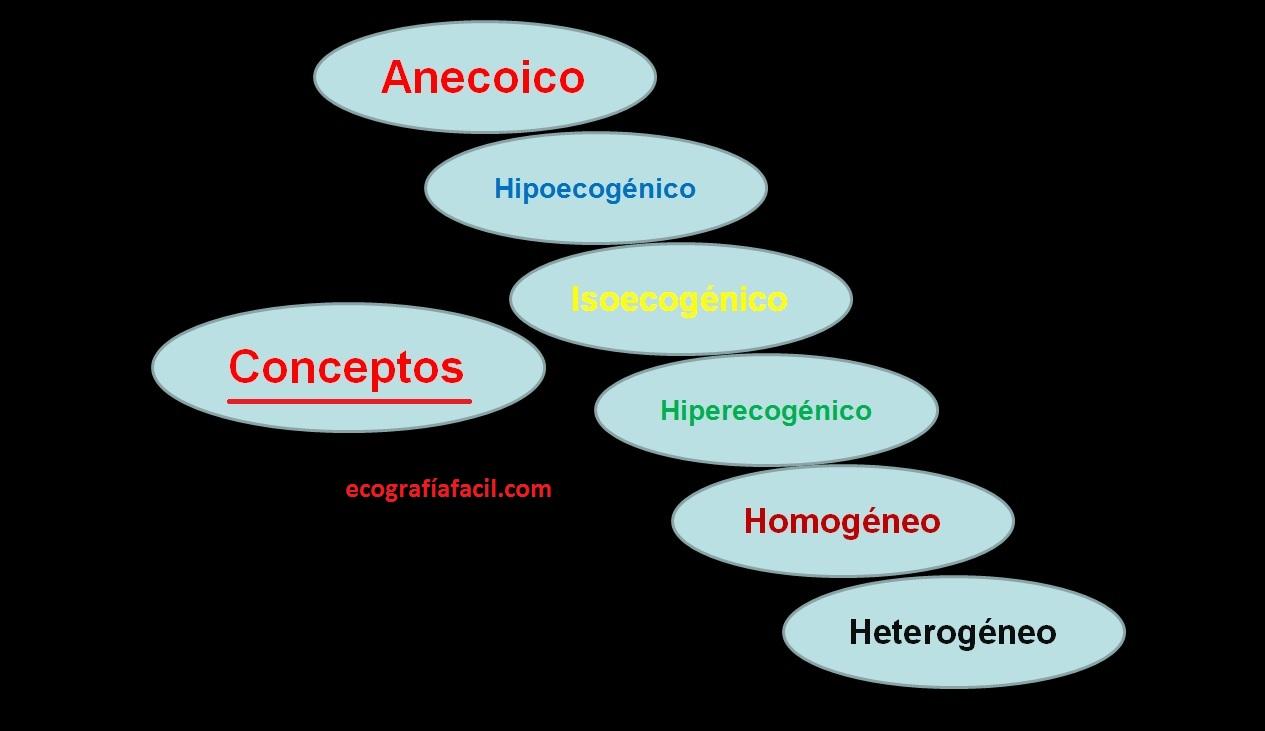 prostata heterogenea que significa